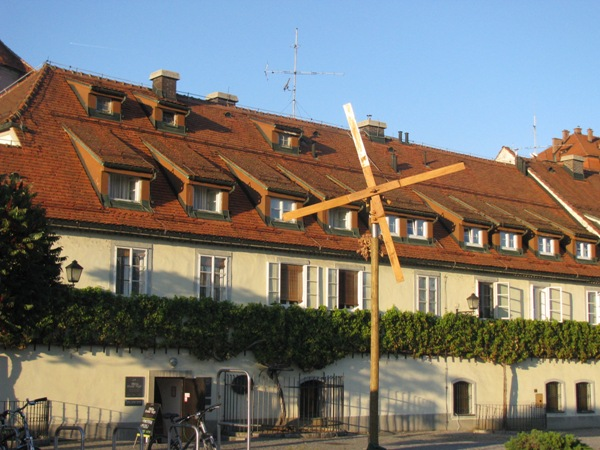Oldest vine in the world in Maribor