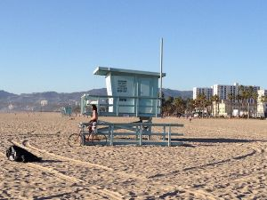 Venice Beach(c) - 5 coins du monde