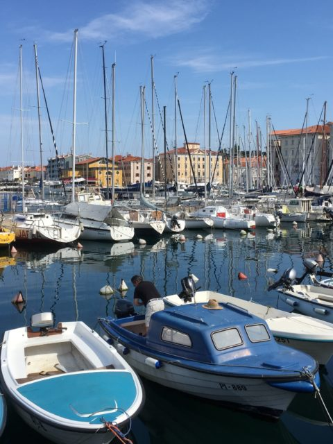 Port of Piran 2