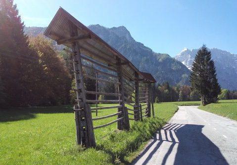 Kozolec Vallée Planica