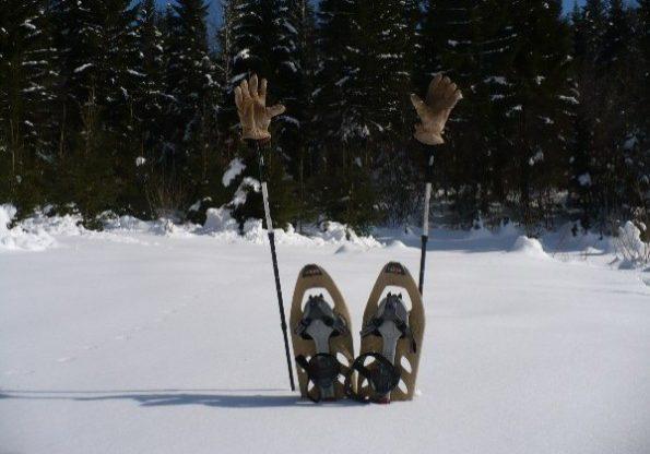 Snowshoeing, M.Marsic
